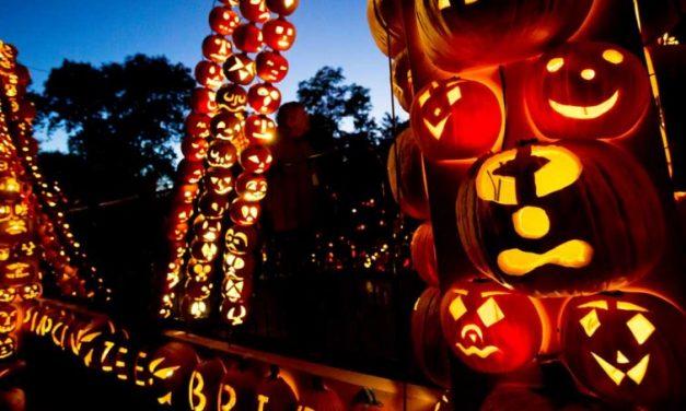 Halloween non è un gioco innocente